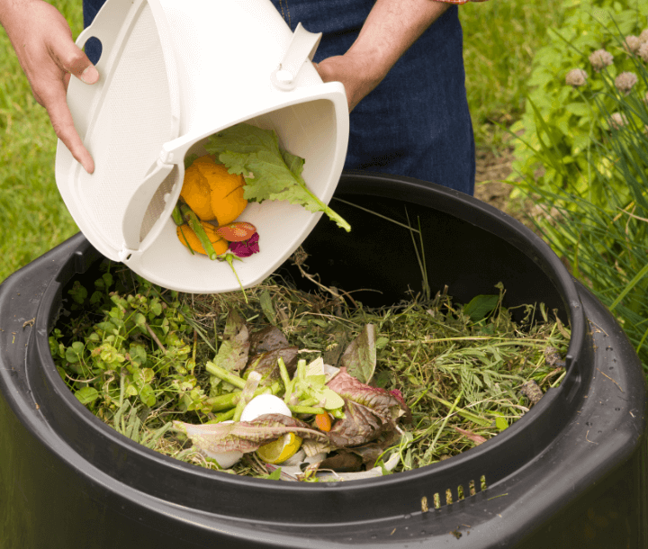 How to Reduce Waste at your Homes?