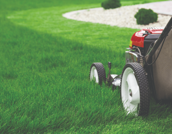 No Green Thumb, No Problem: Essential Lawn Mowing Tips for Brown Thumbs