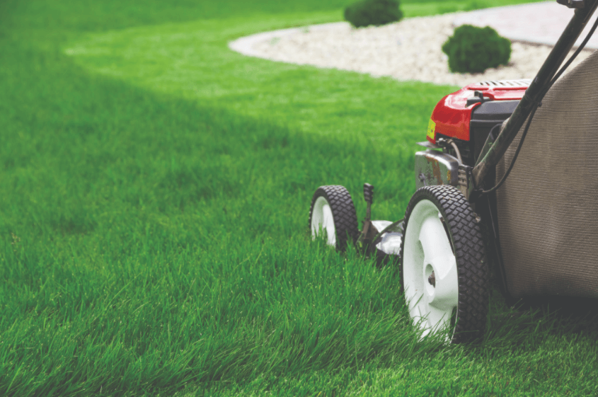Essential Lawn Mowing