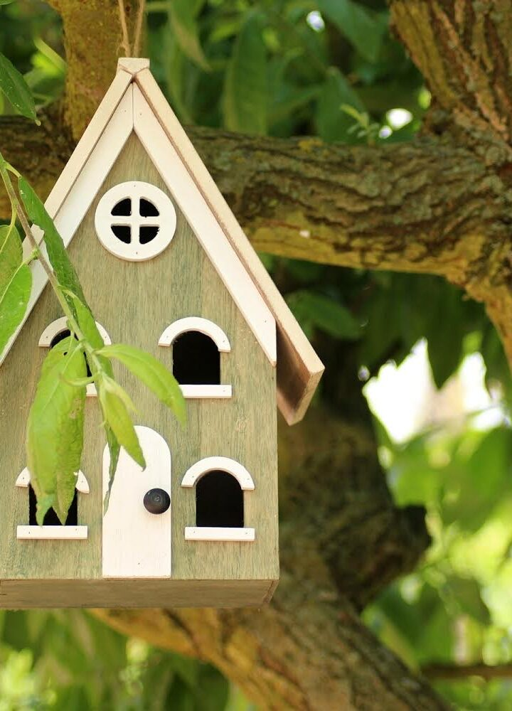 Bring Your Yard to Life: 5 Tips for Choosing the Best Birdhouses